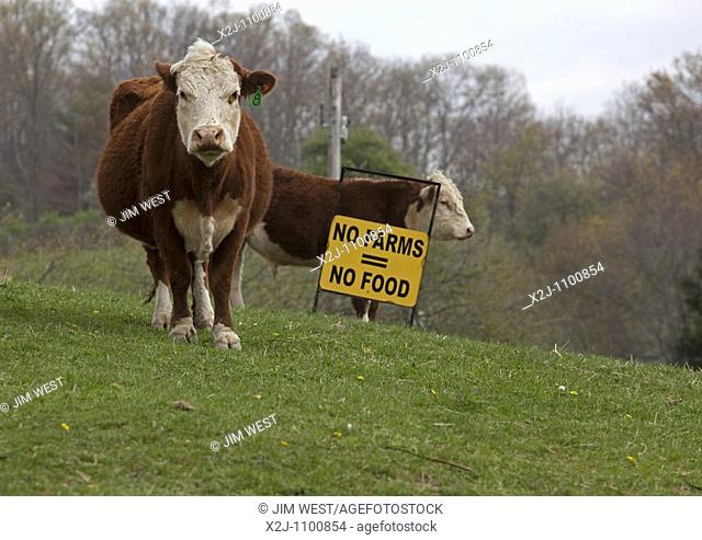 Dameron, West Virginia - A sign in a pasture on a small West Virginia farm promotes farming