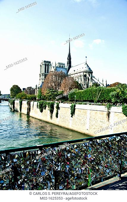 Love padlocks on the rails of Pont de L'Archeveche bridge, Notre Dame de Paris or Notre Dame Cathedral at back, Ile de la Cité, Paris, France, Europe