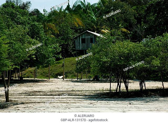 House, Forest, Jaraqui Community, Negro River, Manaus, Amazônia, Amazonas, Brazil