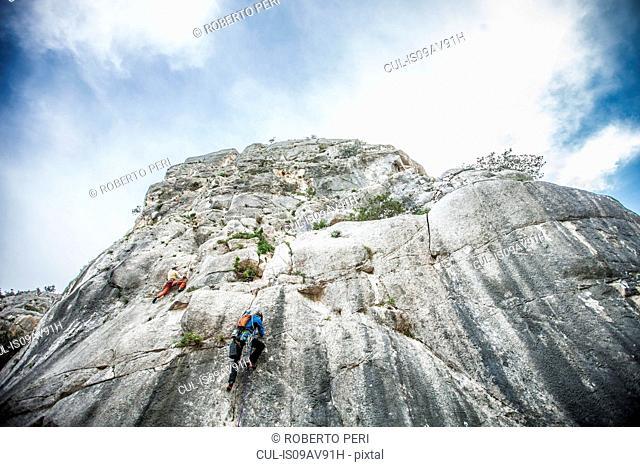 Low angle rear view of rock climber climbing up mountainside, Ogliastra, Sardinia, Italy