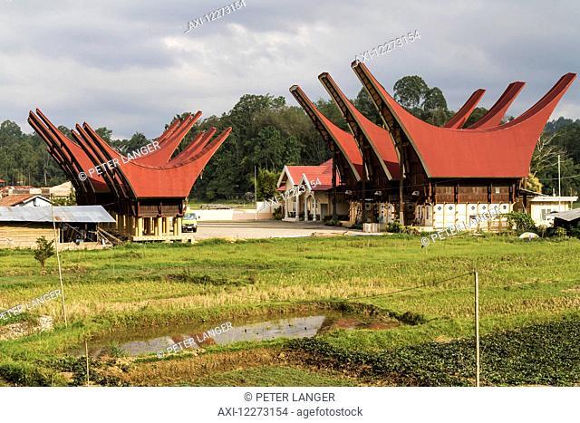 Tongkonan, traditional Torajan ancestral houses in Bori, Toraja Land, South Sulawesi, Indonesia