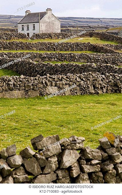 Inishmore. Aran Islands. Galway Co. Ireland