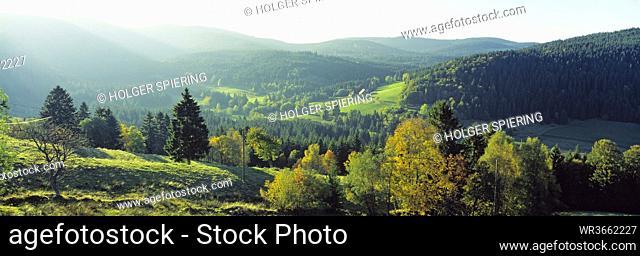 Germany, Baden-Württemberg, Schwarzwald, Woodland, Feldberg in background