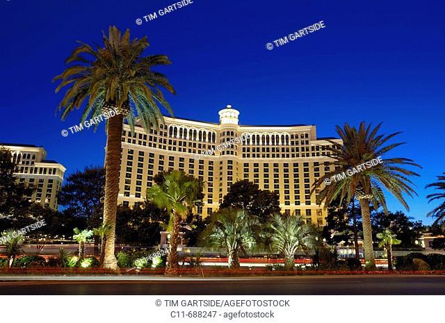 bellagio hotel night showing main road and illuminated palm trees las vegas strip nevada usa america