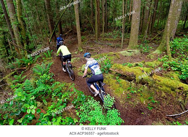 A small group of mountain bikers descend a trail in Powell river, on the upper Sunshine coast area of the Vancouver coast and mountain range, British Columbia