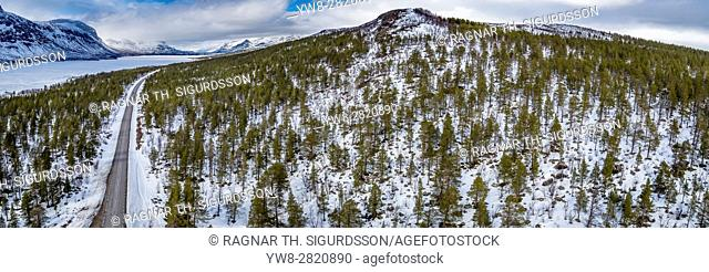 Spruce Trees, Laponian Area, National Park, Stora Sjofallet, Sweden. Drone photography