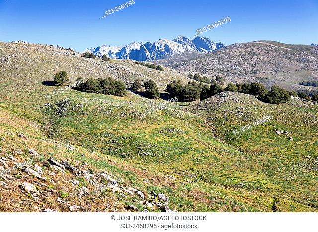 Cuchillar de las Navajas in the Sierra de Gredos. Avila. Castilla Leon. Spain. Europe