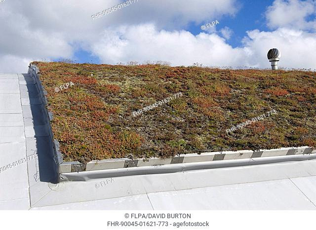 Eco visitor centre with sedum ecological insulation on roof, Cley Marshes, Norfolk Wildlife Trust Reserve, Cley-next-the-Sea, Norfolk, England, september