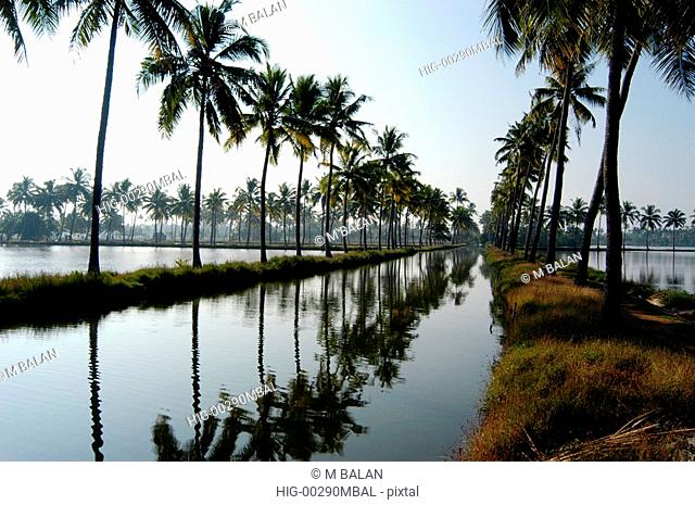 WATERWAY CANAL IN KUMBALANGHI NEAR KOCHI