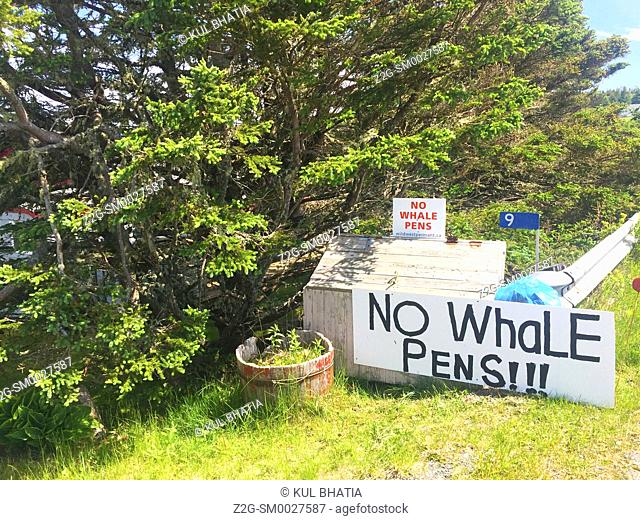 Local support for not allowing pens for freed captive whales, Halifax, Canada