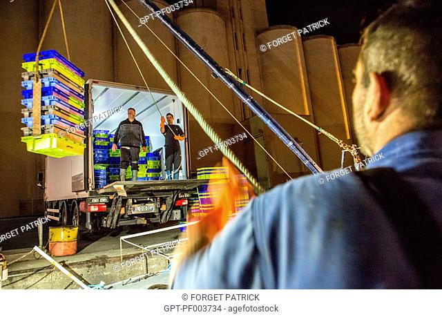 UNLOADING OF THE FISH AND PRAWNS FOR TRANSPORT TO THE WHOLESALE FISH MARKET, THE SHRIMP TRAWLER 'QUENTIN-GREGOIRE', SABLES-D'OLONNE (85), FRANCE