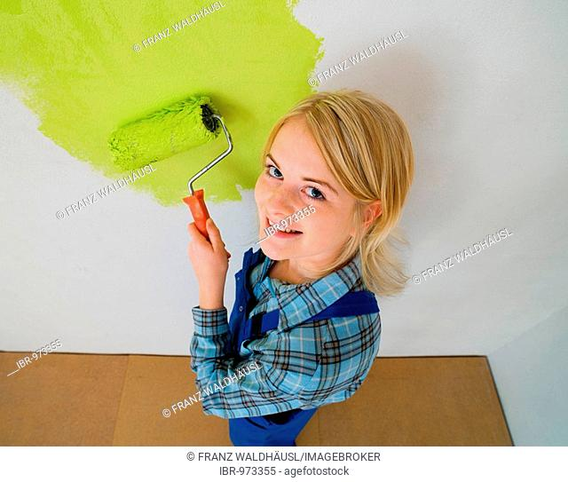Paintress with a paint roller