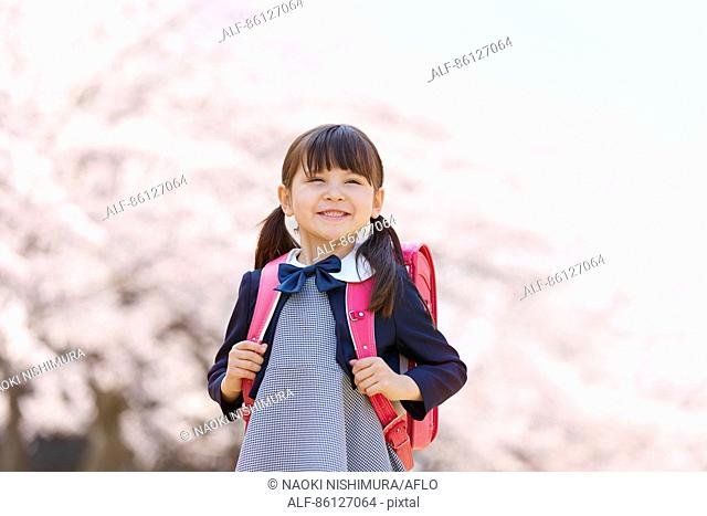 Japanese elementary schoolgirl and cherry blossoms