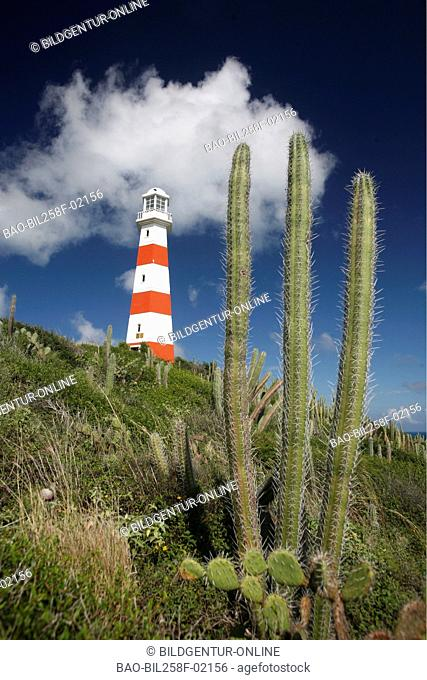 A lighthouse with Pedro Gonzalez in the Caribbean coast of Pampatar on the island Margarita, Venezuela