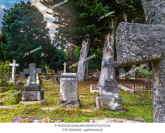 Old cemetery under pine trees. Constantia, Cape Town, South Africa