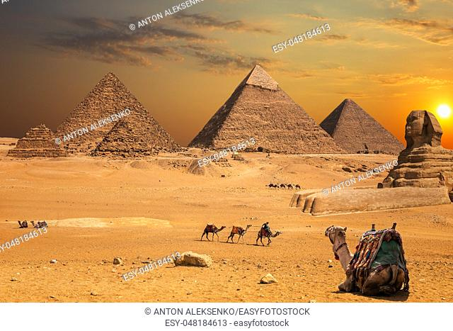 Beautiful sunset view on the Sphinx and the Pyramids of Giza, desert scenery with camels
