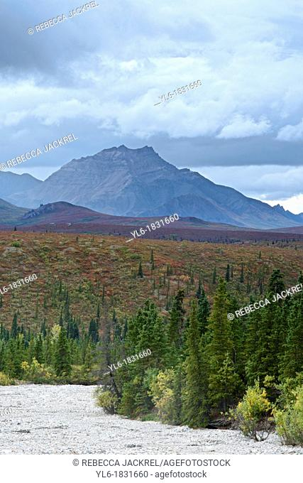 Denali National Park, Alaska shows off its fall colors