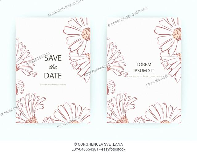 Card flowers Calendula, Chrysanthemum, Chamomile, Daisy, Aster. Wedding ornament minimalist pastel colors. Floral trendy poster, invite