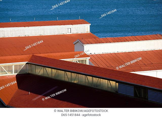 USA, California, San Francisco, Presidio, Golden Gate National Recreation Area, Crissy Field rooftops of historic airplane hangars