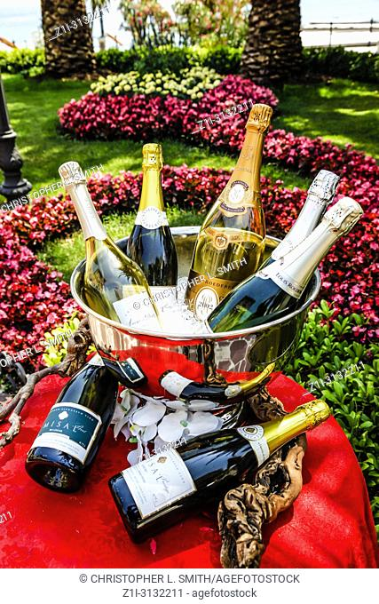 Bottles Croatian Champagne sitting in an ice bucket in the gardens of the Amadria Park Hotel Sveti Jakov, Opatija, Croatia