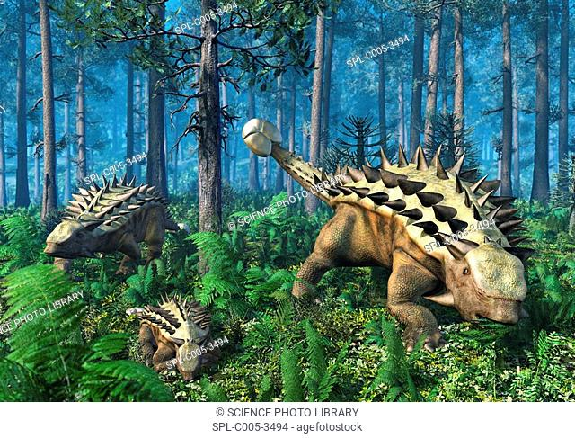 Ankylosaur family, artwork. This heavily-armoured dinosaur lived in the early Mesozoic era, in the Jurassic and Cretaceous periods