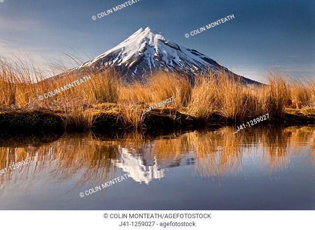 Mt Egmont / Taranaki, dawn reflection in small tarn set among tussock slopes of Pouakai range, Taranaki