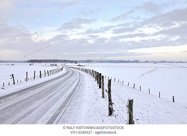 View over the Bislicher Insel / Bislicher Island, snow covered wide open grassland, well-known nature reserve loctaed in North Rhine Westfalia, Lower Rhine