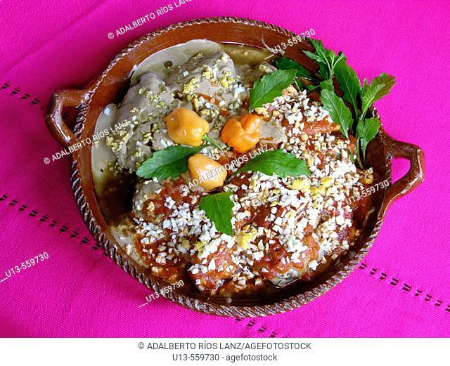 Chicken in green pipian (pumpkin seed) sauce. Hacienda Blanca Flor, near Campeche. Mexico