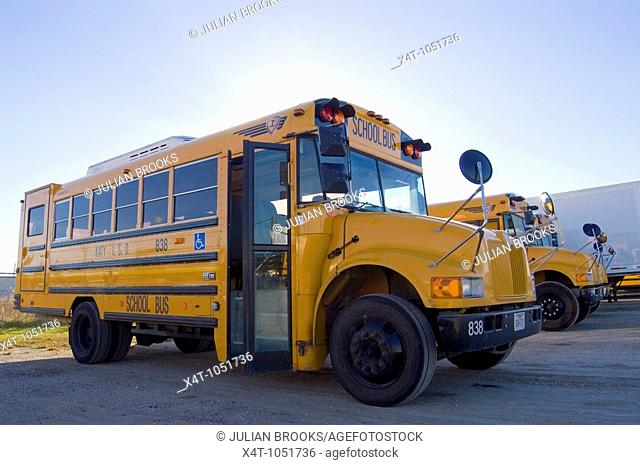 Yellow School buses parked in Houston, Texas