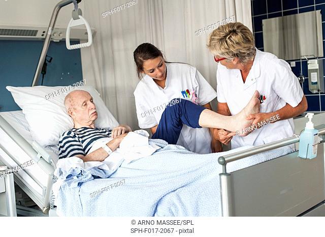 MODEL RELEASED. Female nurses examining senior male patient in hospital bed