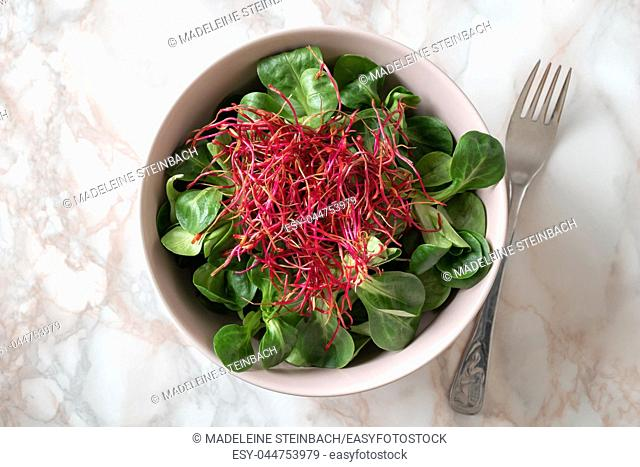 Salad with lamb's lettuce and red beet sprouts, top view