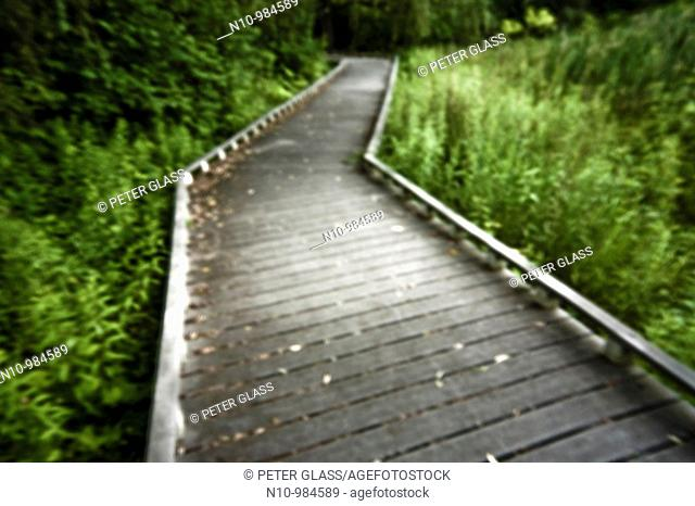 Walking trail at a city park