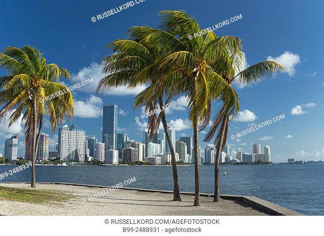 Brickell Avenue Skyline From Rickenbacker Causeway Downtown Miami Florida Usa