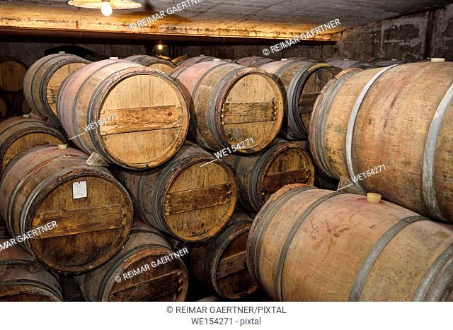 Constant temperature arched cellar with French barrique oak barrels at Kabaj Morel Guest House and winery Slovrenc Dobrovo Brda Slovenia