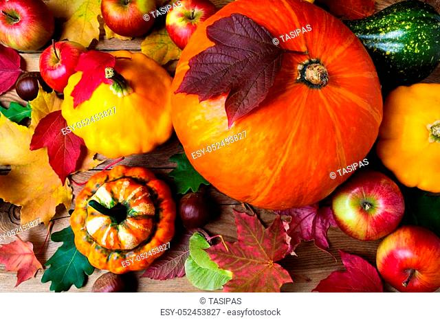 Red apples, pumpkins and yellow gourd with colorful fall leaves, top view. Thanksgiving or fall greeting background