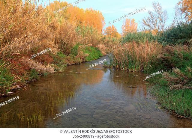 vegetation on the bank of river Palancia in autumn, near of Soneja. Alto Palancia region in Castellón. Spain