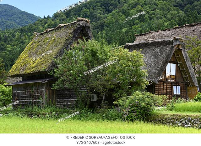 Traditional thatched roof house in Shirakawa-go, Japan, Asia