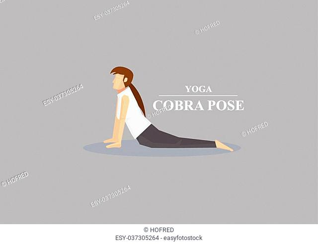 Sporty women in yoga cobra pose with chest lifted and hands and lower body on the floor. Vector illustration isolated on plain grey background