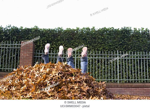 Children falling into leaf pile