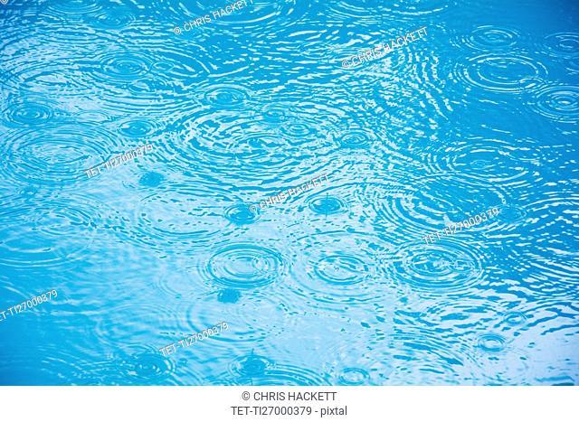 Raindrops on puddle