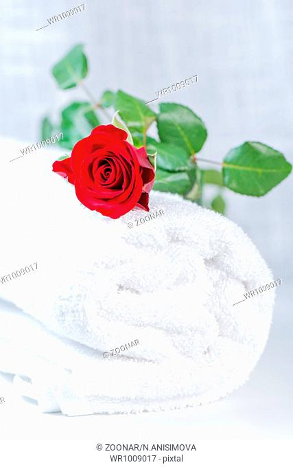 clean rolled towel with red rose