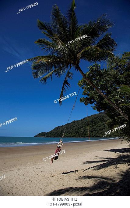 Carefree woman swinging on rope swing below palm tree on tropical beach, Port Douglas, Queensland