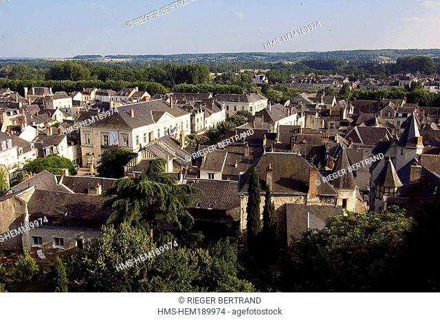 France, Indre et Loire, Loire Valley listed as World Heritage by UNESCO, Chinon, City Hall in the heart of old town