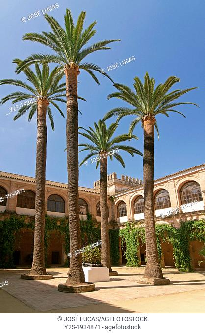 Monastery of the Light -15th century, Courtyard and palm trees, Lucena del Puerto, Huelva-province, Region of Andalusia; Spain