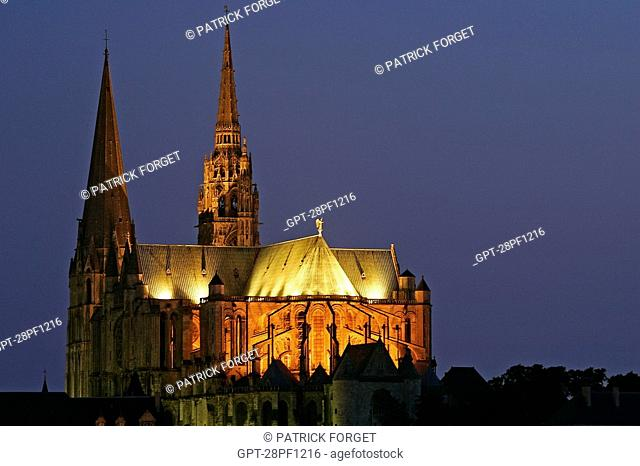 CHARTRES CATHEDRAL SEEN AT NIGHT, EURE-ET-LOIR 28, FRANCE