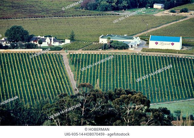 Wine Route, Stellenbosch, Western Cape