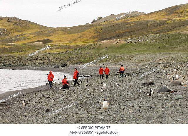 Antarctica, South Shetlands Islands, Aitcho Island, Tourists at Penguin colony. MR