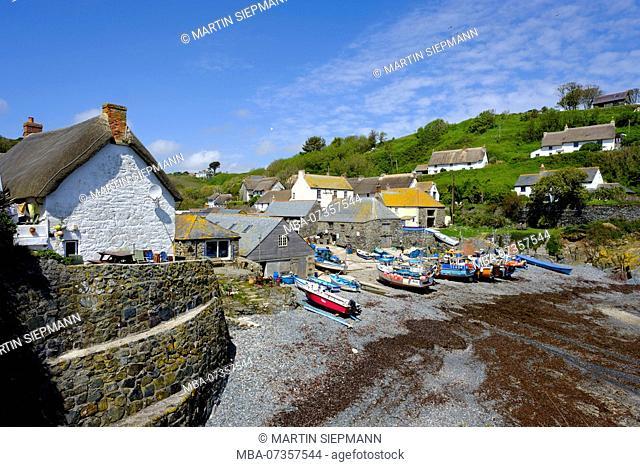 Fishing harbor, Cadgwith, Lizard Peninsula, Cornwall, England, UK