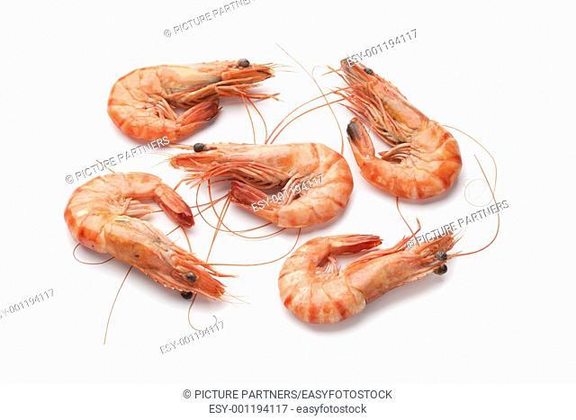 Whole cooked shrimps on white background