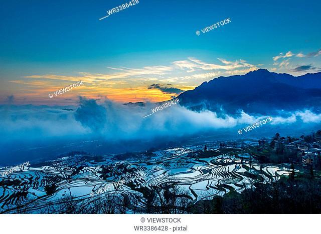 Yuan Yang terraces